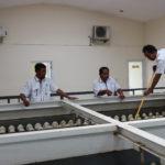 Team Work Penting Dalam Perusahaan